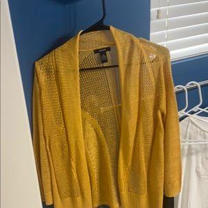 Alfani sweater